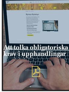 publikation-ex.jpg